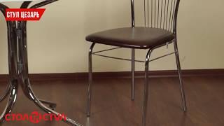 Обеденный стул для кафе, дома и кухни Цезарь. Обзор стула для дома и кухни от Стол и Стул
