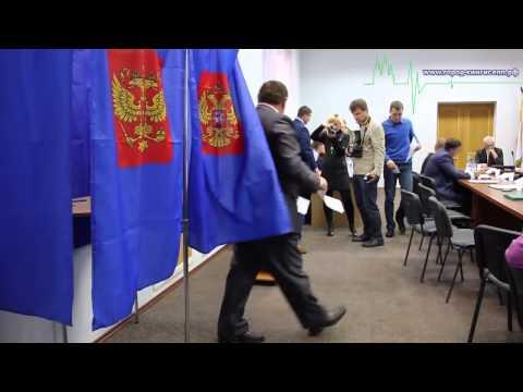 Выбор главы Ивангород
