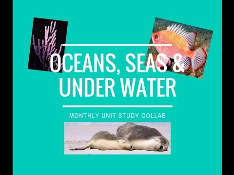 Unit Study Collab | Oceans, Seas & Underwater