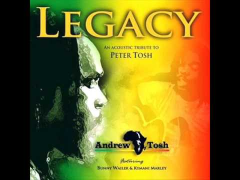 Andrew Tosh   -   Lessons in my life feat Kymani Marley  2010
