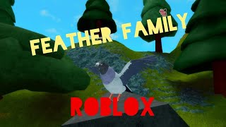 Feather Family / Sparrow/Pigeon/Owl - ROBLOX