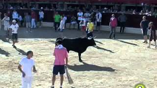 Tercer Encierro de Medina del Campo - San Antolín 2014