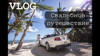 видео Наше свадебное путешествие. Часть II
