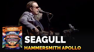 Joe Bonamassa - Seagull - Live at the Hammersmith Apollo