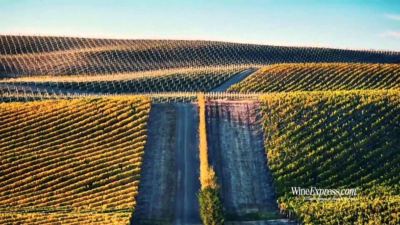 Marlborough single vineyards
