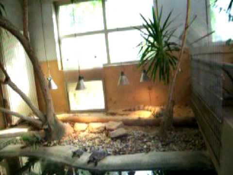 Worms, Germany - Tiergarten (Zoo) Video 14