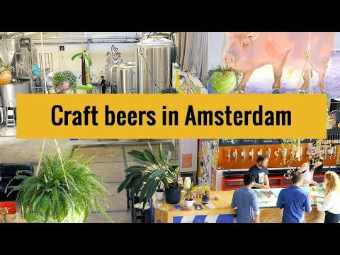 Microbreweries And Craft Beers In Amsterdam