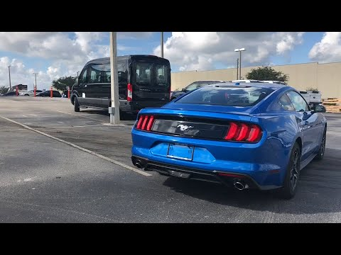 2019 Ford Mustang Davenport, Clermont, Orlando, Winter Garden, Haines City, FL 20561