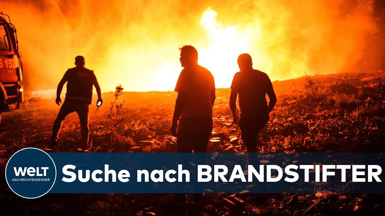 Download DRAMATISCHE LAGE: Verzweifelter Kampf gegen heftige Waldbrände in der Türkei