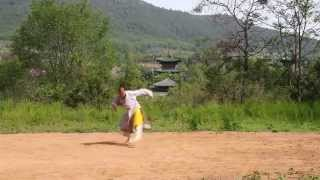 Video Shaolin Drunken Form download MP3, 3GP, MP4, WEBM, AVI, FLV Agustus 2018
