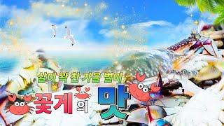 살이 꽉 찬 가을 별미 꽃게의 맛 [대케맛] / KBS…