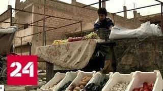 Сирия постепенно приходит в себя - Россия 24