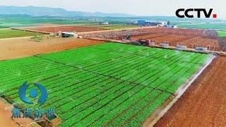 进入新发展阶段,农村工作该怎么干?  CCTV「焦点访谈」20201230 - YouTube