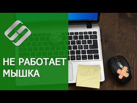 Не работает 🖱️ мышка на компьютере или 💻 ноутбуке  с Windows 10, 8 и 7