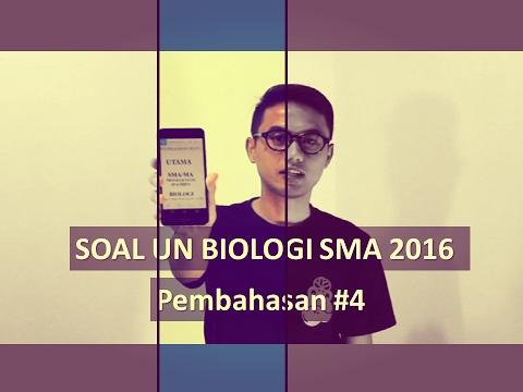 Soal Un Biologi Sma 2016 Pembahasan 4 Youtube