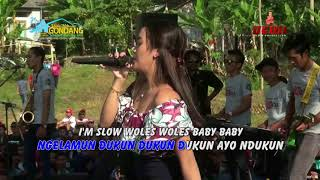 Download Video JARAN GOYANG   Sabrina  IRLANDA MP3 3GP MP4