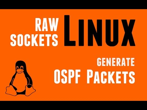 Linux RAW Sockets - Generate OSPF Packets