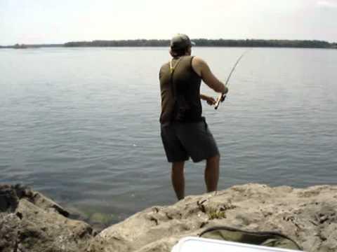 Upper Niagara River Bass Frenzy