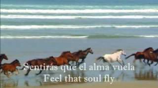 DIEGO TORRES COLOR ESPERANZA con letras en Inglés y Español