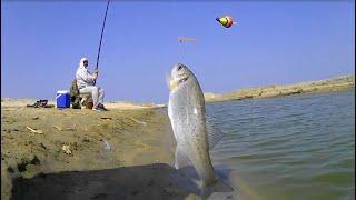 مفرمة صيد القاروص بالطعم الحى من المكان الجديد تصوير بكاميرا ثابته اثناء خروج السمك