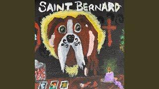 Saint Bernard 2
