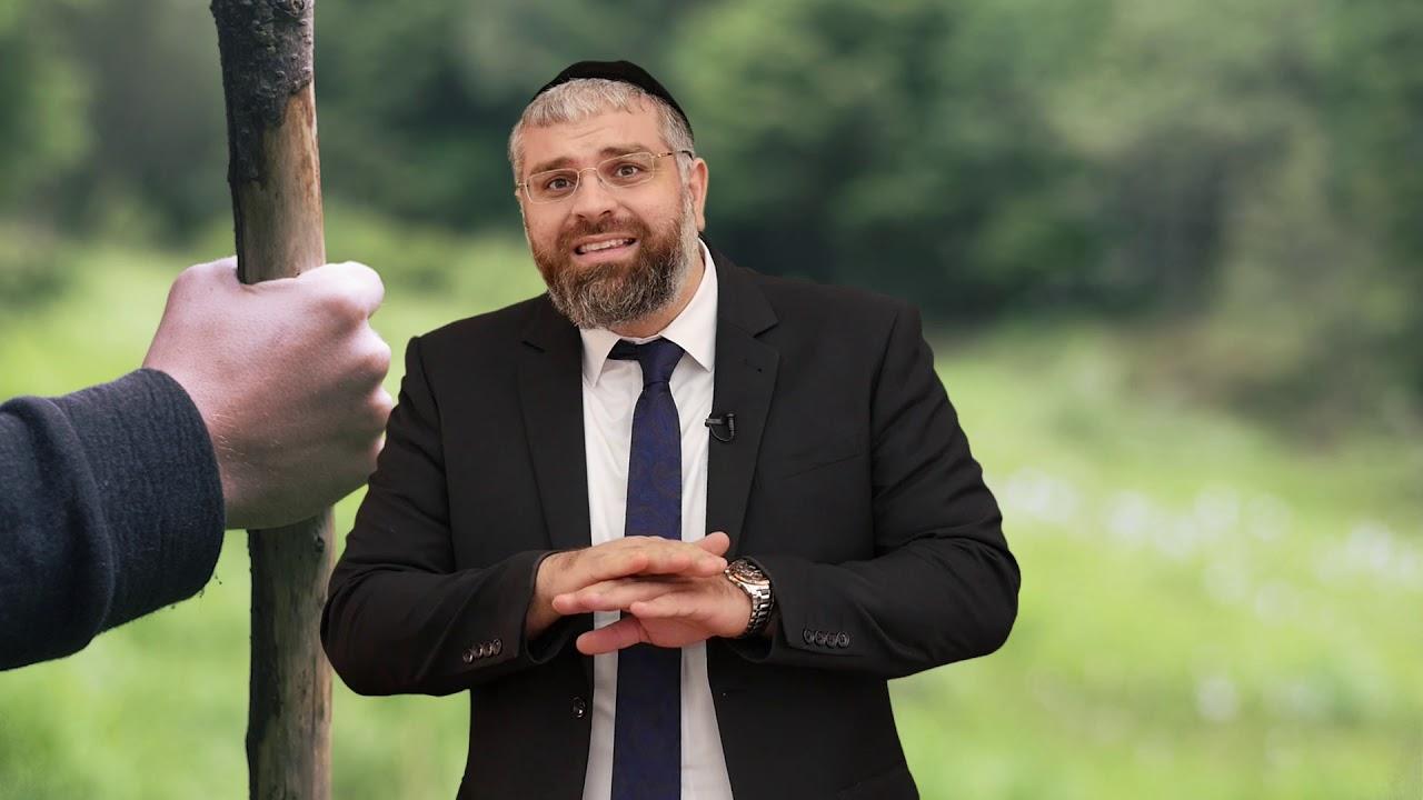 הרב מיכאל כהן - מקל הליכה עם צלב