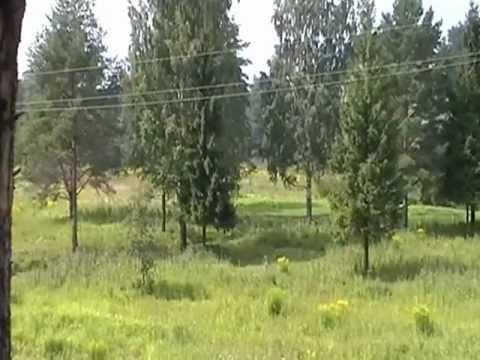 Песни на стихи Н.Рубцова 1992 г