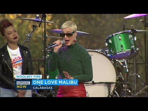 Katy Perry, Gwen Stefani help raise money for Malibu fire victims | ABC7 Mp3