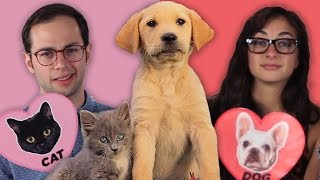 Dog Facts Vs. Cat Facts