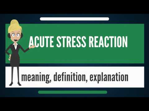 What is ACUTE STRESS REACTION? What doe ACUTE STRESS REACTION mean?