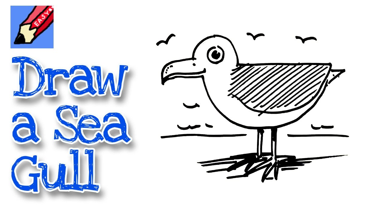 how to draw a seagull real easy for kids and beginners youtube