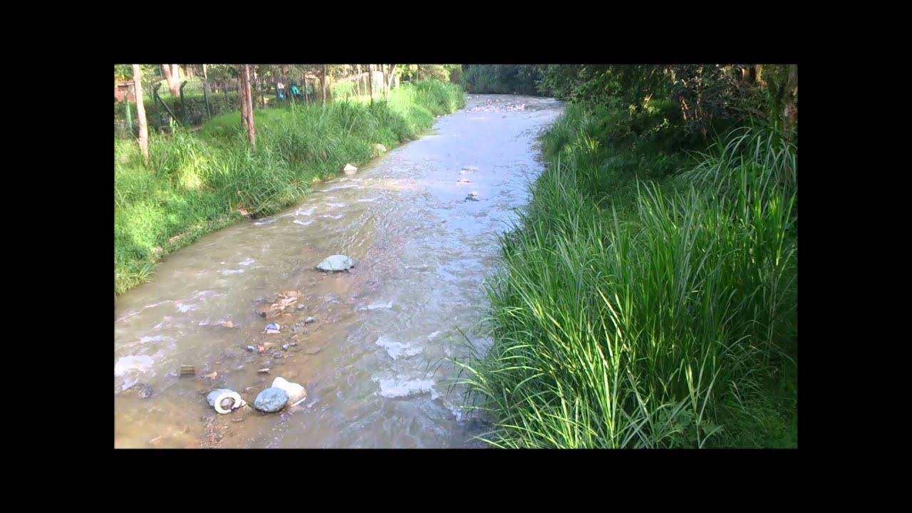 Aplicaci n de la qu mica en el medio ambiente youtube - Humidificar el ambiente ...