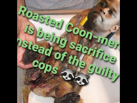 $12million and Roasted Coon on a Platter is that a substitute for justice?