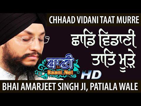 Chhaad-Vidani-Taat-Murre-Bhai-Amarjeet-Singhji-Patiala-Wale-Takhatpur-Chattisgarh