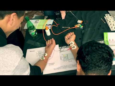 Heads Up at La Academia Partnership Charter School || 2015-2016