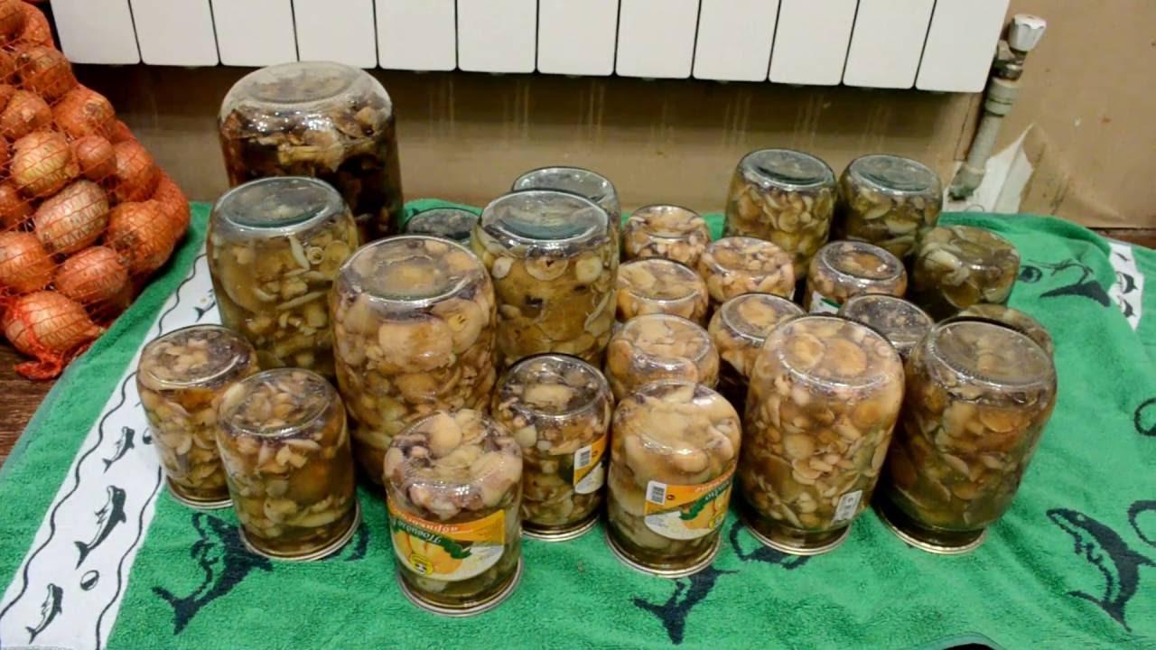 Рецепт самых вкусных маринованных грибов!!! Часть 2
