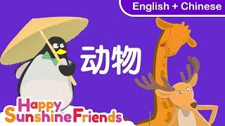 English & Chinese Animal Song 动物歌曲