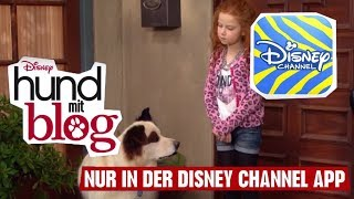 HUND MIT BLOG - Clip: Prinzessin | Disney Channel App