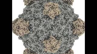 Bacteriophage phi X174 - PDB ID: 2bpa