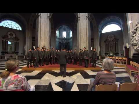 Aleron Choir in concert - 30/05/2017 - Collégiale Saint-Jean, Liège