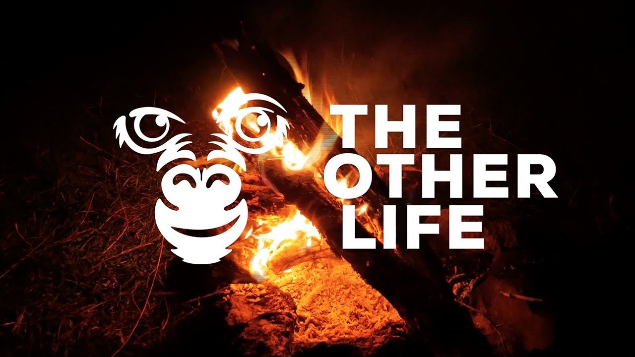 Bande-annonce : The Other Life