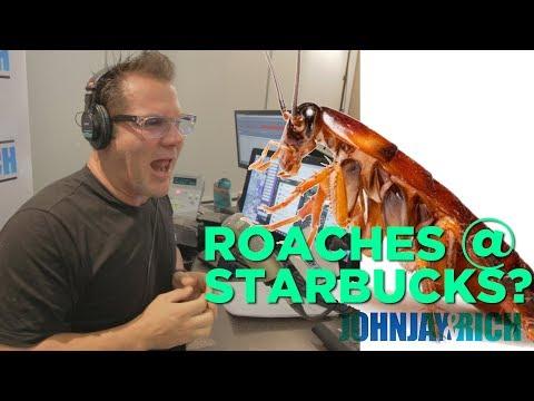 In-Studio Videos - Cockroaches At Starbucks?!?!