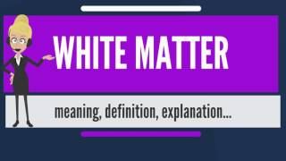 What is WHITE MATTER? What does WHITE MATTER mean? WHITE MATTER meaning & explanation