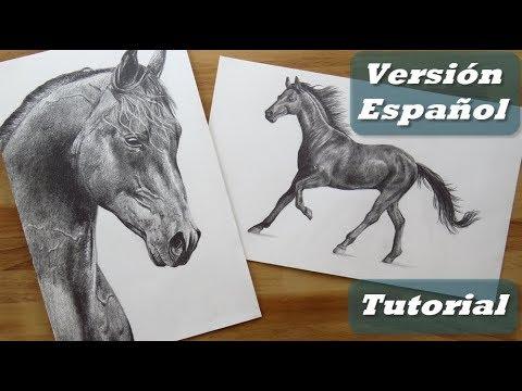 Cómo dibujar un CABALLO ¡FÁCIL! | TIPS para dibujar - YouTube