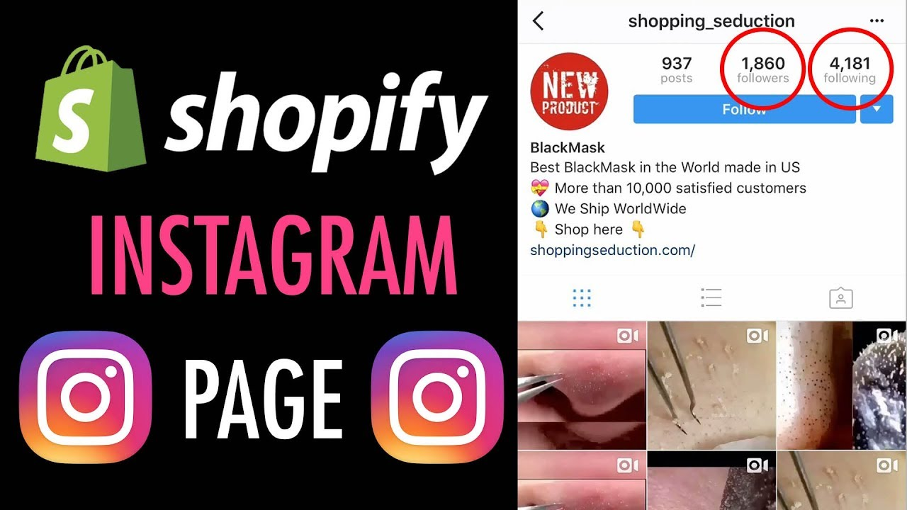 How To Setup Your Shopify Store's Instagram Page (Dropshipping)