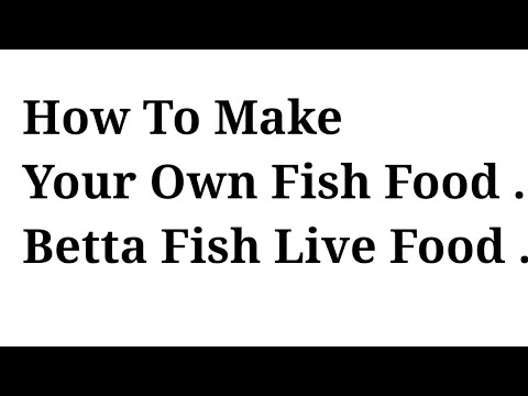How to make your own fish food . Betta fish live food .