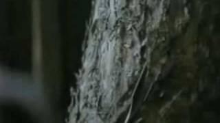 Pinocchio 2002 Trailer