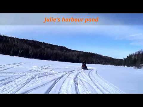 shoal arm & Julie's harbour ski doo ride