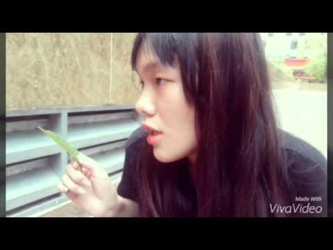 10E6   Nhom 2   Bao luc hoc duong