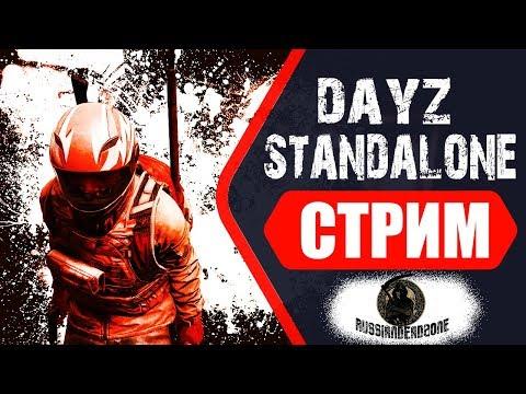 Dayz Standalone 1.03 | КОГДА-ТО БУДЕТ ЕДА | СТРИМ С ВЕБКОЙ
